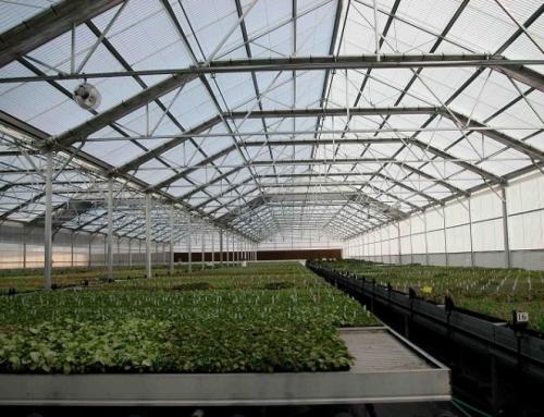 احداث گلخانههای زیرزمینی برای اولین بار در خوسف