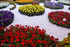 نمایشگاه گل